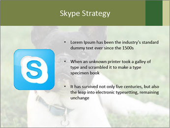 0000072275 PowerPoint Template - Slide 8