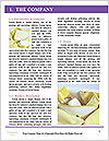 0000072278 Word Templates - Page 3