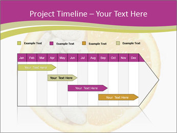 0000072280 PowerPoint Template - Slide 25