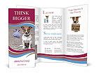 0000072281 Brochure Template