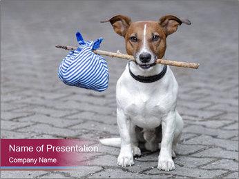 0000072281 PowerPoint Templates - Slide 1