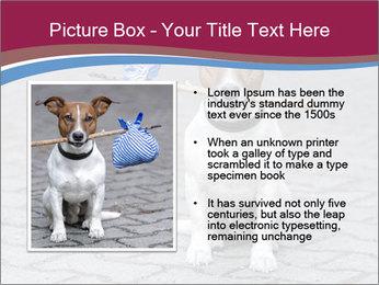 0000072281 PowerPoint Templates - Slide 13