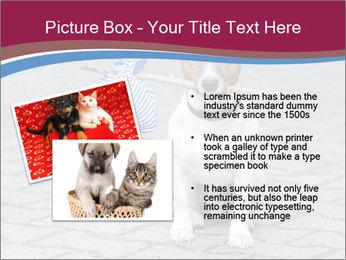 0000072281 PowerPoint Templates - Slide 20