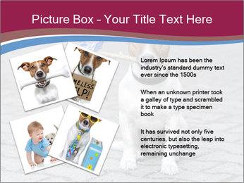 0000072281 PowerPoint Templates - Slide 23