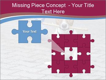 0000072281 PowerPoint Templates - Slide 45