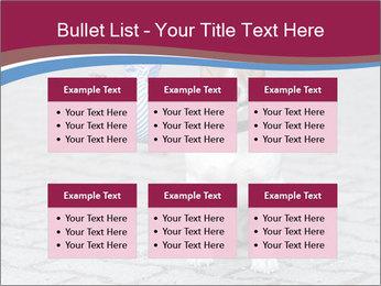 0000072281 PowerPoint Templates - Slide 56