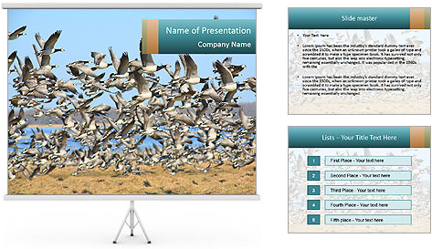 0000072291 PowerPoint Template