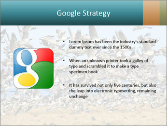 0000072291 PowerPoint Templates - Slide 10
