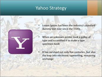 0000072291 PowerPoint Templates - Slide 11
