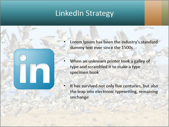 0000072291 PowerPoint Templates - Slide 12