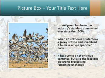 0000072291 PowerPoint Template - Slide 13