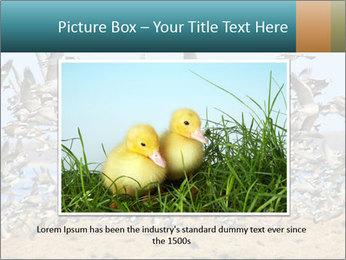 0000072291 PowerPoint Templates - Slide 15
