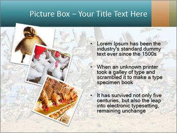 0000072291 PowerPoint Templates - Slide 17