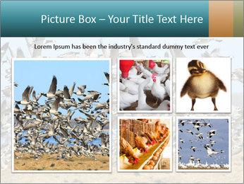 0000072291 PowerPoint Templates - Slide 19