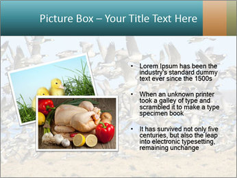 0000072291 PowerPoint Templates - Slide 20