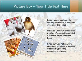 0000072291 PowerPoint Templates - Slide 23
