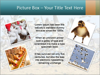 0000072291 PowerPoint Templates - Slide 24