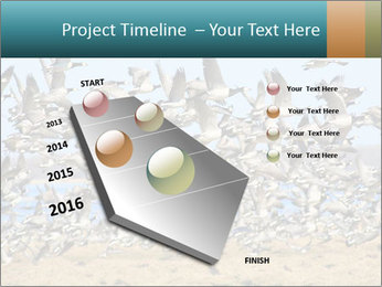 0000072291 PowerPoint Templates - Slide 26
