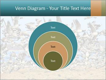 0000072291 PowerPoint Templates - Slide 34