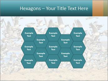 0000072291 PowerPoint Templates - Slide 44