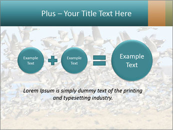 0000072291 PowerPoint Templates - Slide 75
