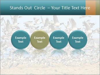 0000072291 PowerPoint Templates - Slide 76