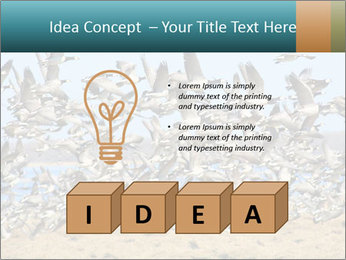 0000072291 PowerPoint Templates - Slide 80