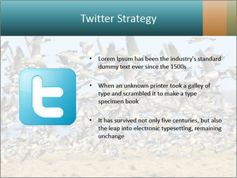 0000072291 PowerPoint Templates - Slide 9
