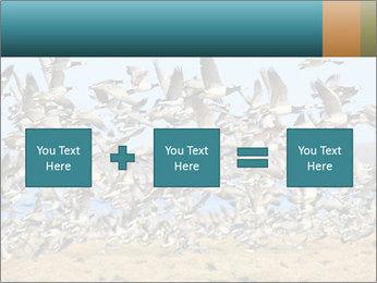 0000072291 PowerPoint Template - Slide 95