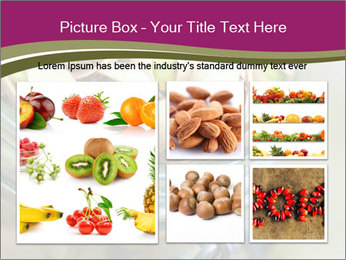 0000072296 PowerPoint Template - Slide 19