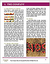 0000072296 Word Templates - Page 3