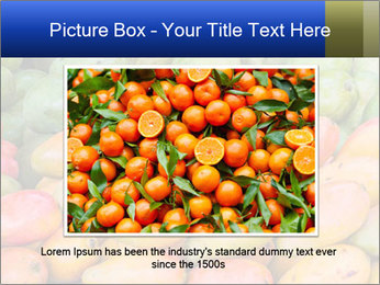 0000072307 PowerPoint Template - Slide 15