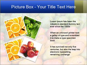 0000072307 PowerPoint Template - Slide 23