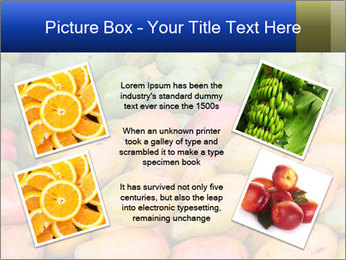 0000072307 PowerPoint Template - Slide 24