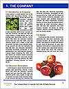 0000072307 Word Template - Page 3