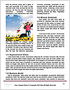 0000072308 Word Templates - Page 4