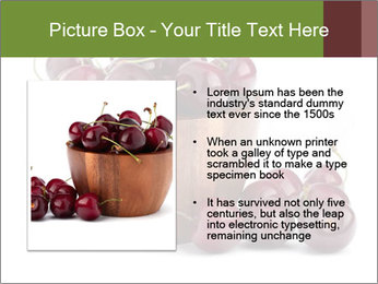 0000072321 PowerPoint Templates - Slide 13