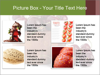 0000072321 PowerPoint Templates - Slide 14