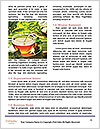 0000072322 Word Template - Page 4