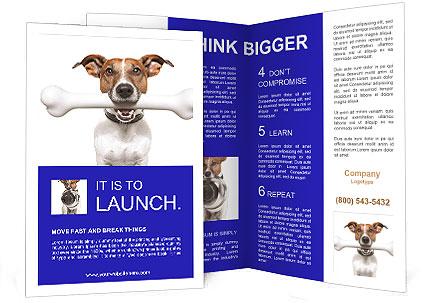 0000072325 Brochure Templates