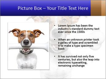 0000072325 PowerPoint Template - Slide 13