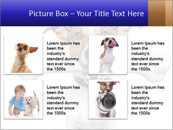 0000072325 PowerPoint Template - Slide 14