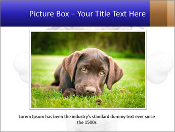 0000072325 PowerPoint Templates - Slide 15