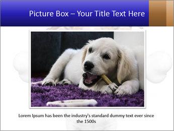 0000072325 PowerPoint Template - Slide 16