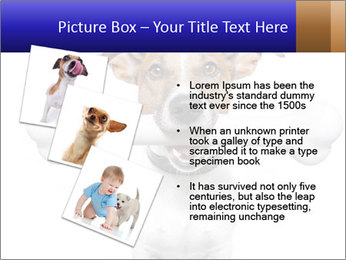 0000072325 PowerPoint Templates - Slide 17