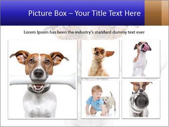 0000072325 PowerPoint Templates - Slide 19