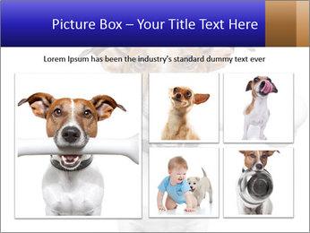 0000072325 PowerPoint Template - Slide 19