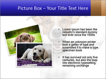 0000072325 PowerPoint Templates - Slide 20