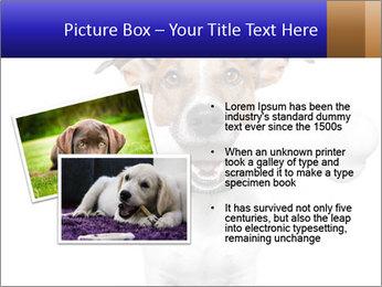 0000072325 PowerPoint Template - Slide 20
