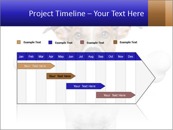0000072325 PowerPoint Templates - Slide 25